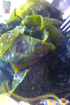 Salad of Korean seaweeds
