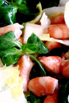 Salad (of Endives) with Shrimps